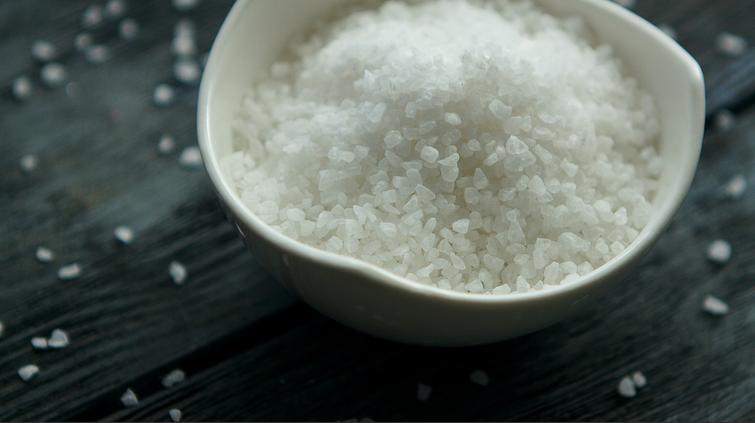 salt tampa cardio