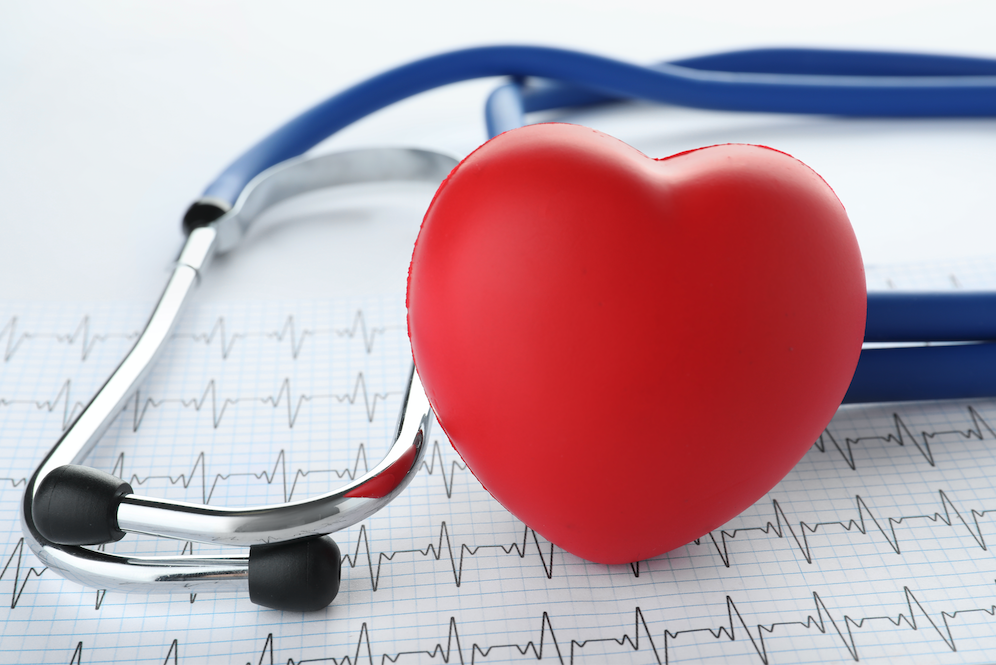 heart murmur tampa cardio
