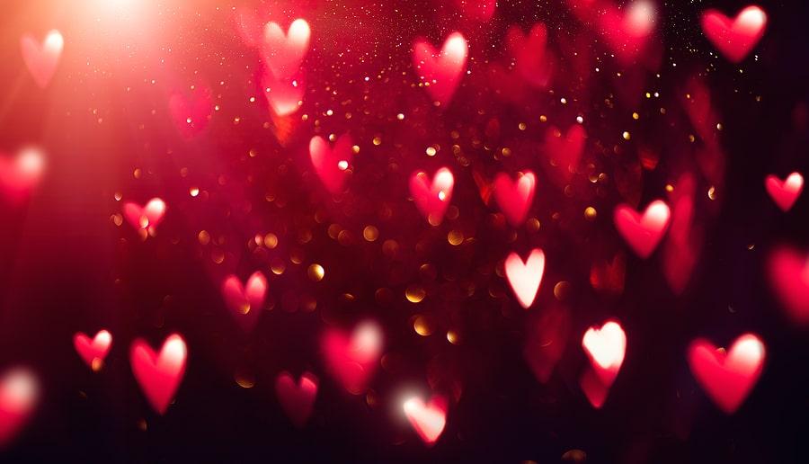 heart shape human heart shape anatomy tampa cardio tampa florida cardiologist